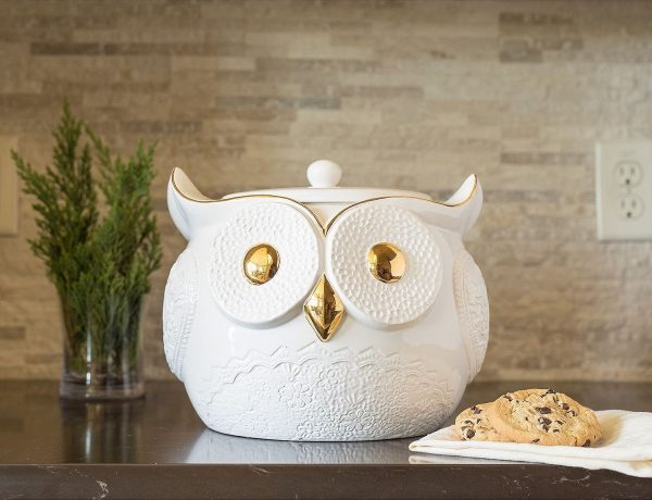 white-owl-with-gold-eyes-and-beak-cute-cookie-jars-600x460